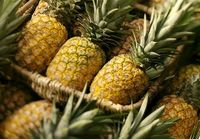 مصوبه سه کیلو سیب ببر یک کیلو آناناس بیار ابلاغ شد