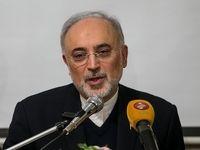 انتقاد رئیس سازمان انرژی اتمی از خرید ارزان برق نیروگاه بوشهر