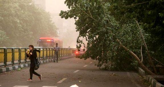 طوفان تهران را درنوردید