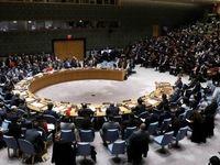 جلسه شورای امنیت برای بررسی عملیات ترکیه در سوریه
