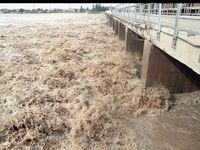 کرخه و دز حوزههای احتمالی بحران خوزستان/ از نزدیک شدن به رودخانهها جداً خودداری کنید