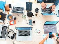 با کار در یک شرکت نوپا چه میآموزیم؟