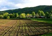 امسال بیسابقهترین خشکسالی برای کشاورزی بود