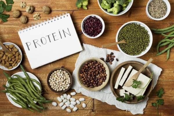 پروتئین و حبوبات
