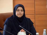 شرفبافی: یاتا از ایران در برابر تحریمها حمایت کند