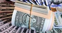 انهدام یک باند اخلالگر در بازار ارز
