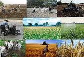 سود بازرگانی واردات قطعی ۹ قلم کالای کشاورزی اعلام شد