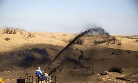 مالچپاشی در زیستگاههای خوزستان متوقف شود