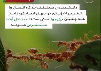 حشرات چه تاثیری در حفظ محیط زیست دارند؟ +فیلم