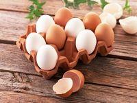 رد یک باور اشتباه در باره مصرف تخم مرغ