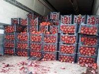 توقیف ۴٩کامیون حامل گوجه فرنگی در مرز شلمچه