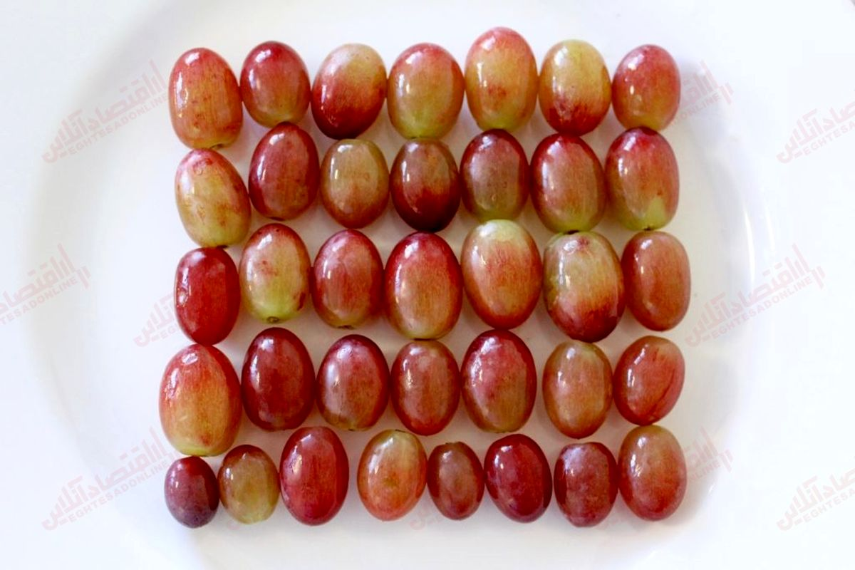 ۱۴ مورد از بهترین فواید انگور قرمز