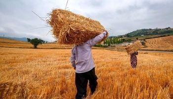 ۱۵ مرحله برای دریافت وام اشتغال روستایی