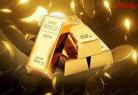افزایش قیمت طلا ادامه یافـت