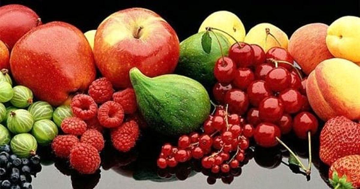 گرانی میوه هیچ ربطی به میوهفروشان ندارد