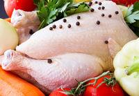 فروش مرغ بالاتر از ۱۰هزارتومان گرانفروشی است