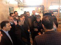 بازدید رئیس هیئتمدیره و مدیرعامل بانک توسعه تعاون از طرحهای اقتصادی استان قزوین