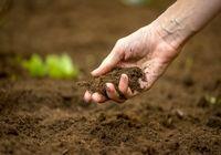 مغایرت لایحه حفاظت از خاک با قانون اساسی و اسناد بالادستی