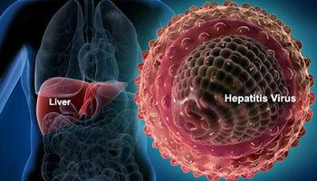 ۱.۵میلیون ایرانی ناقل ویروس هپاتیت B