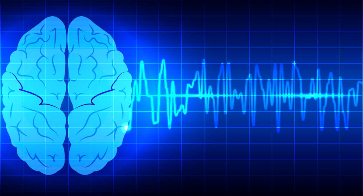 حقایقی جالب درباره مغز انسان