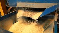 ممنوعیت واردات فصلی برنج لغو شد