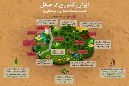 ایران، کشوری کم جنگل +اینفوگرافیک