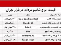 قیمت انواع شامپو مردانه؟ +جدول