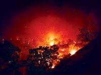 خرابکاری در جنگلهای ایران
