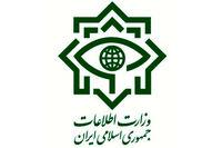 ضربه وزارت اطلاعات به باند فساد اقتصادی در گمرک
