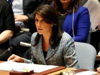 هیلی: لازم باشد، خودمان در سوریه وارد عمل میشویم