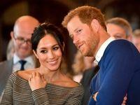 خاندان سلطنتی در انتظار فرزند جدید +فیلم