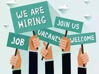 نگاهی به بازار مشاغل و کارکنان بیکار شده آمریکا / شرایط چه زمانی عادی میشود؟