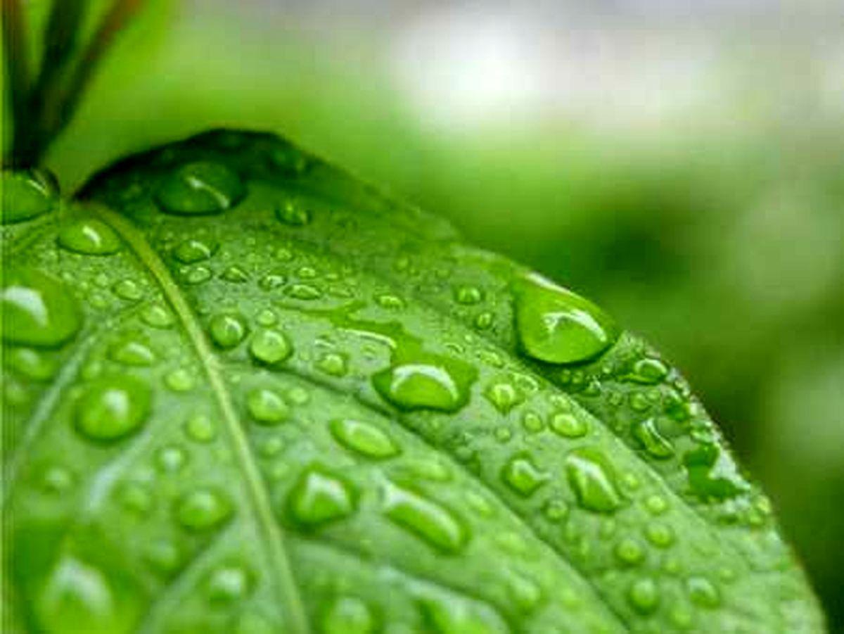 کاهش سهدرصدی بارشها در سال آبی جاری