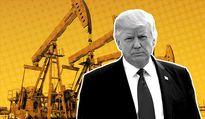 کلید بخت پرزیدنت در دست ایالات نفتی/ طلای سیاه به یاری ترامپ میآید