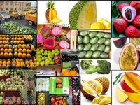 رخنمایی میوههای ممنوعه در فضای مجازی!