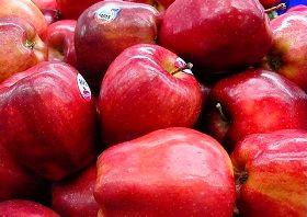 سرنوشت تلخ میوههای آذربایجان