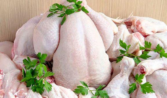 قیمت مرغ در بازار آزاد به ۱۳۵۰۰تومان کاهش یافت