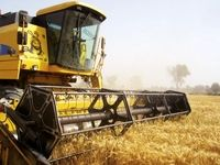 اختصاص ۱۵هزار میلیارد ریال جهت تقویت صندوق بیمه محصولات کشاورزی