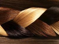 موهای سالم و درخشان با ۵ ماده غذایی