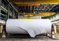 جنگ کاغذی با شرکتهای کاغذی