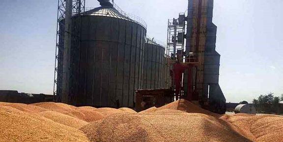 نرخ خرید تضمینی 25قلم محصول کشاورزی ابلاغ شد