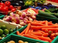 سود محصولات کشاورزی را دلالان میبرند
