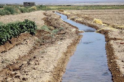 توصیههای هواشناسی کشاورزی برای پایان سال