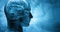چند عادت اشتباه که مغز را مختل میکند