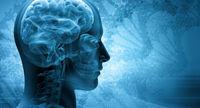 واقعیتهایی درباره کالری سوزی فعالیتهای مغزی
