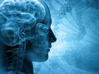 کشف روشی جدید برای تقویت حافظه مردان