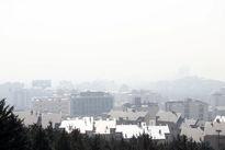 مرگ سالانه ۴هزار نفر بر اثر آلودگی هوا در تهران