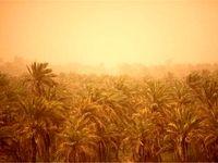 گردوغبار آسمان خوزستان را فراگرفت