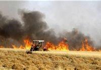 برخورد مجلس با تفکیک وظایف جهاد کشاورزی