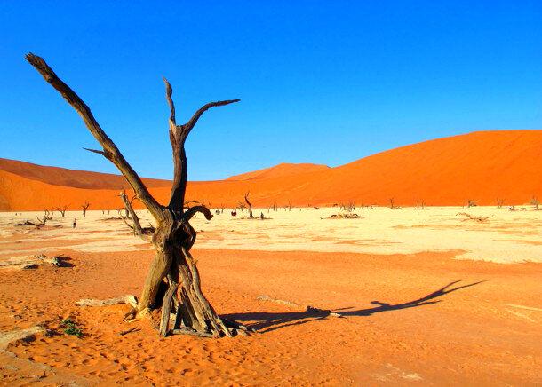5280367_sossusvlei-namib-nauklift-national-park-namibia-c.-jocelyn-middleton